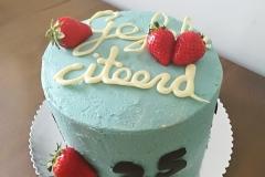 Verjaardags-taart-25-jaar